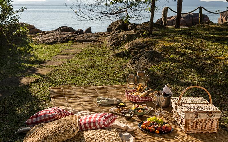 picnic_page